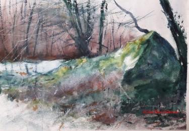 Le rocher en forêt